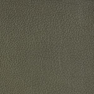 Carina 9003 Einzelelemente 1ALR 1002 85 86 84 47 55 Leder Leder Mercury oliv